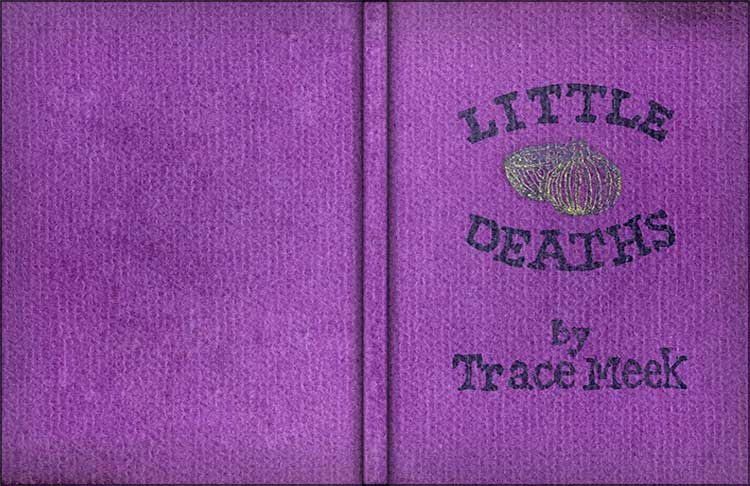 Little Deaths cover
