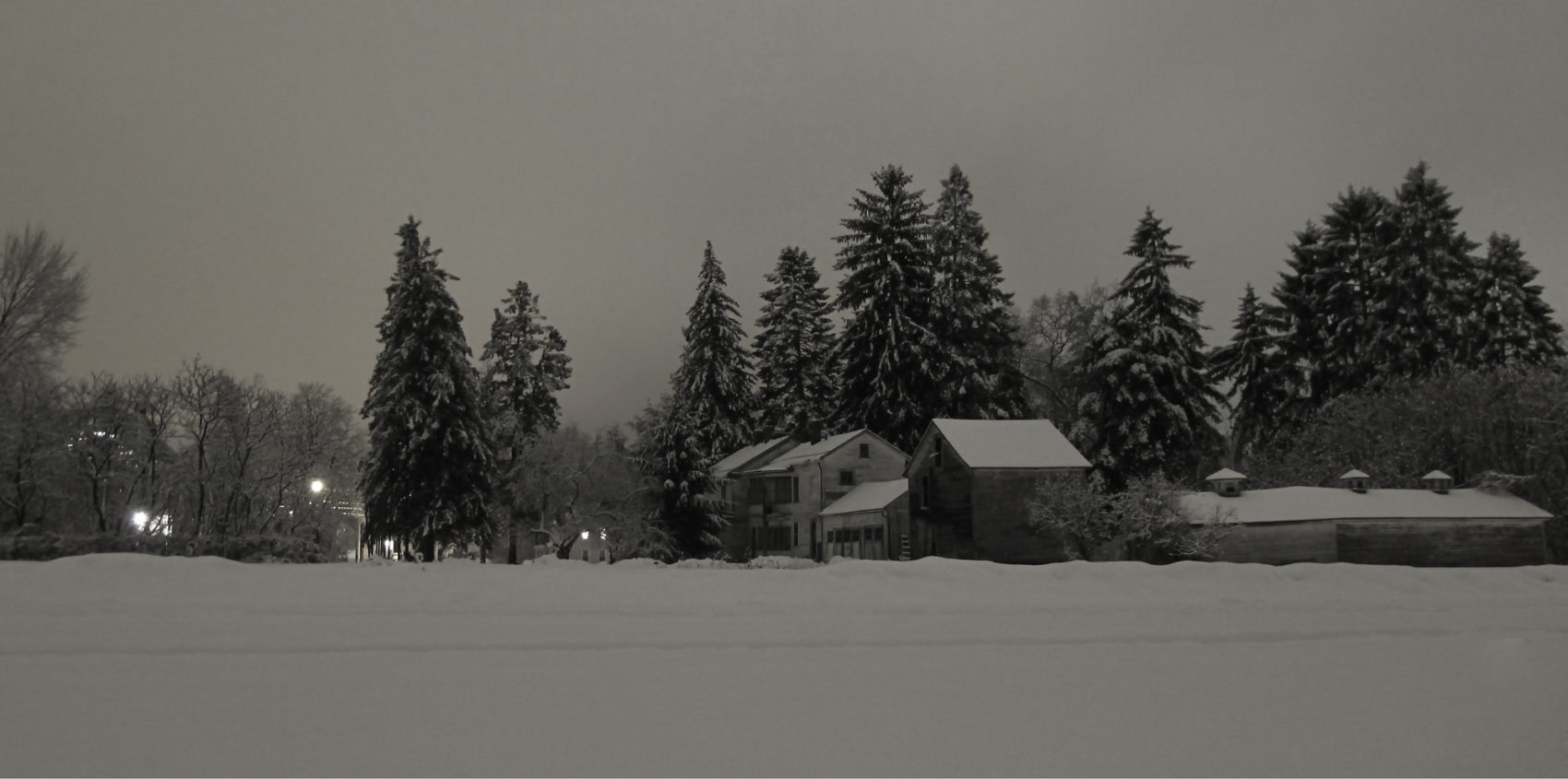 Blanketed photo by Trace Meek